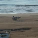 1 pk op het strand bij San Clemente
